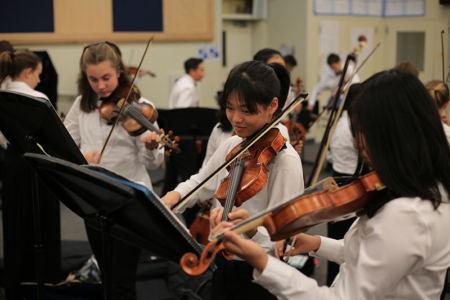 Support the orchestras